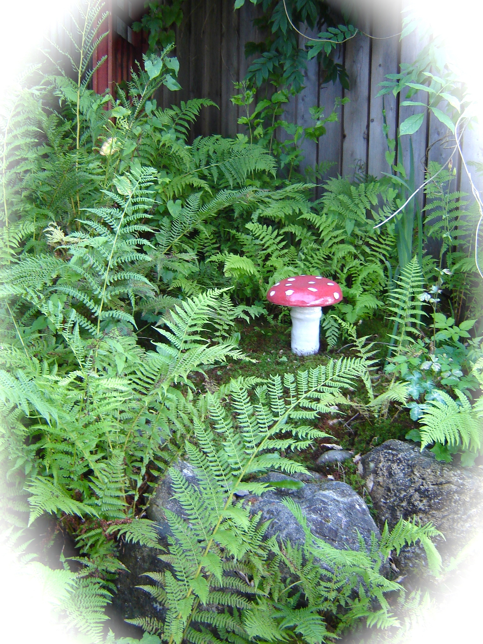 My mini-Secret Garden...a bit overgrown. An out of the way nook...with the giant mushroom I made last year.